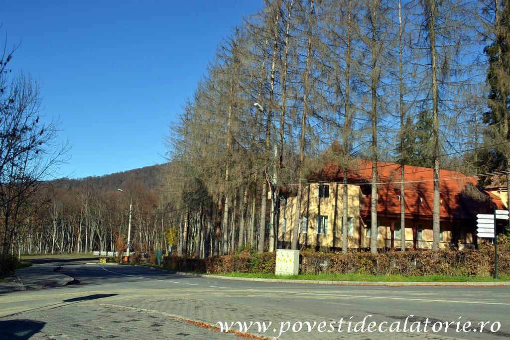 Forumul de Sanatate Targu Mures (26)