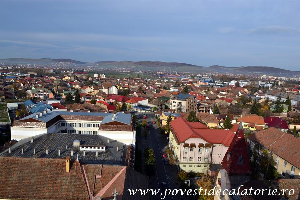 Forumul de Sanatate Targu Mures (4)