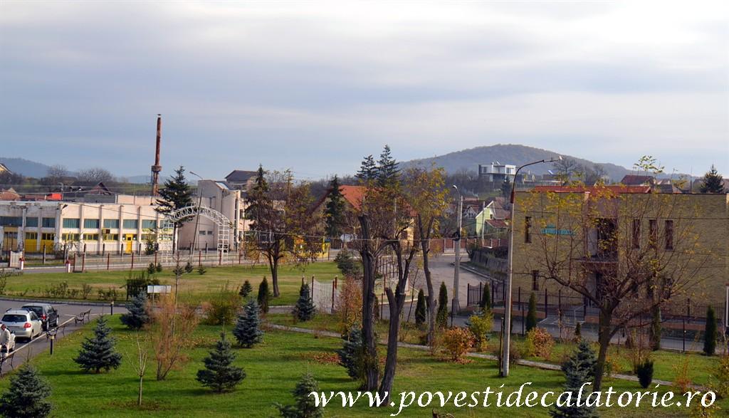 Forumul de Sanatate Targu Mures (6)