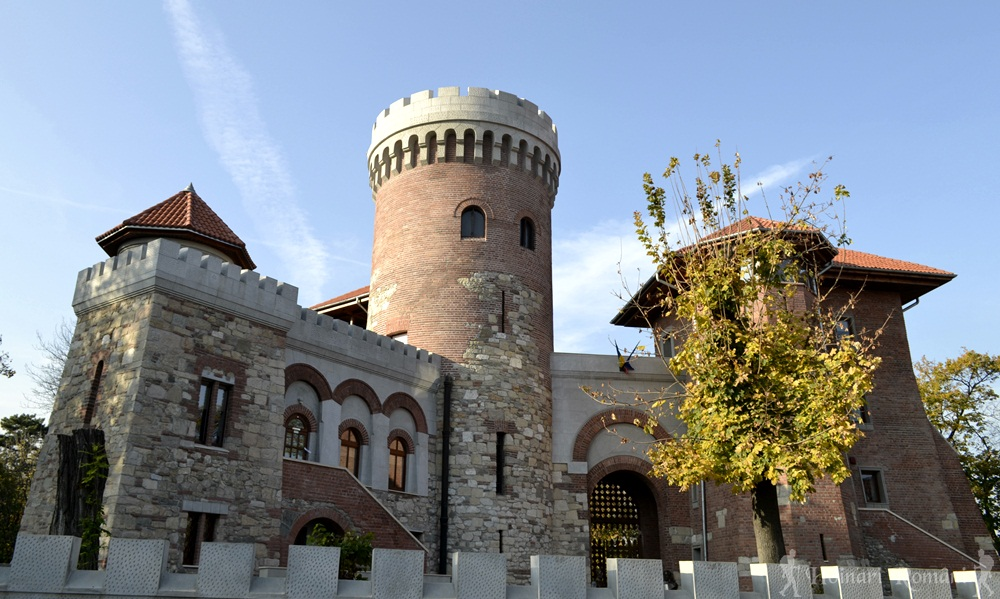 castelul tepes -parcul carol-bucuresti
