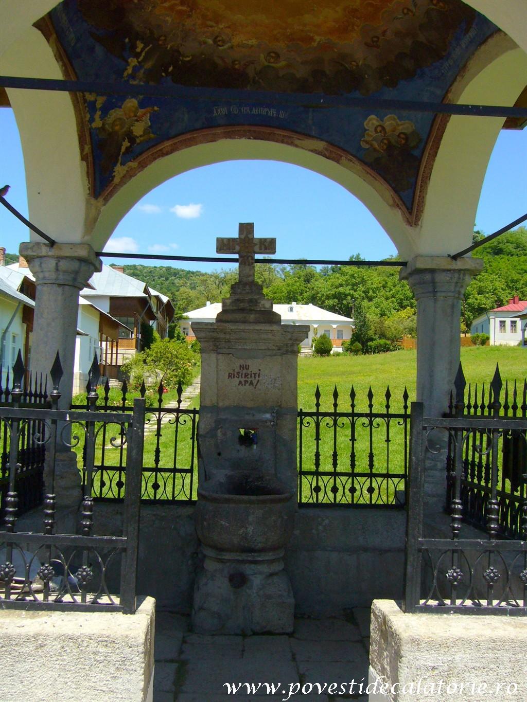 Manastirea Ciolanu (33)