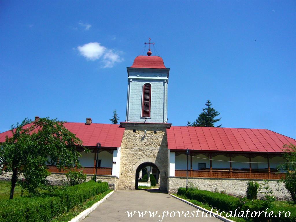 Manastirea Ciolanu (80)