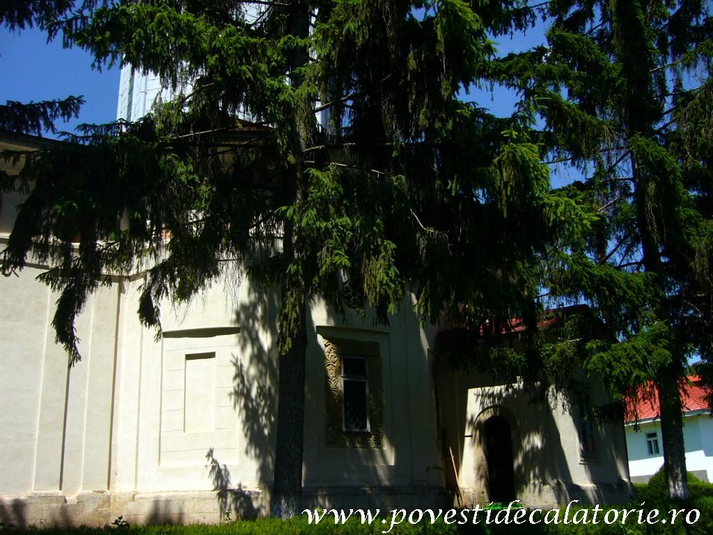 Manastirea Ciolanu (82)
