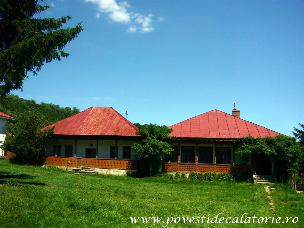 Manastirea Ciolanu (83)