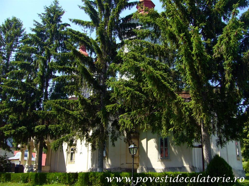 Manastirea Ciolanu (84)