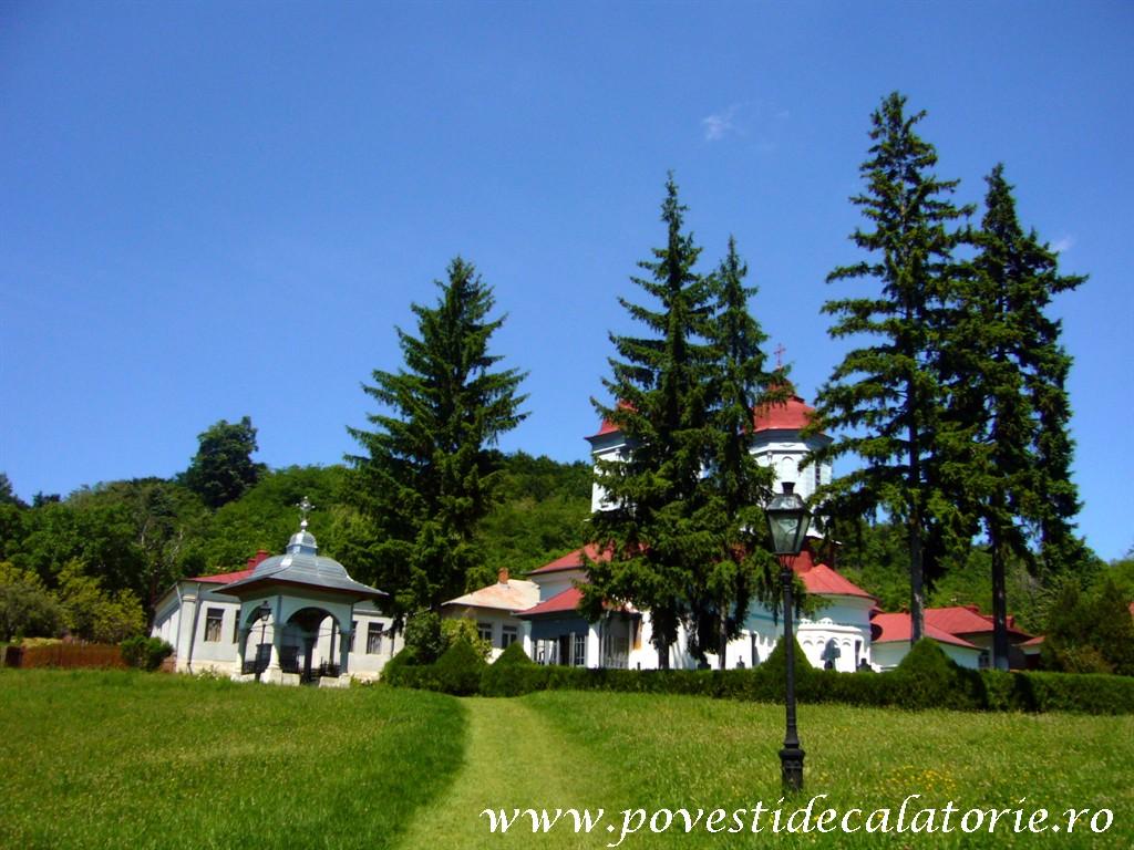 Manastirea Ciolanu (87)