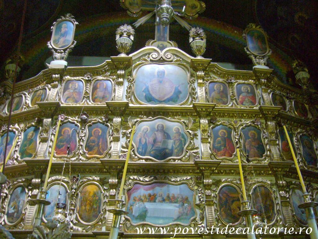 Manastirea Ciolanu (98)