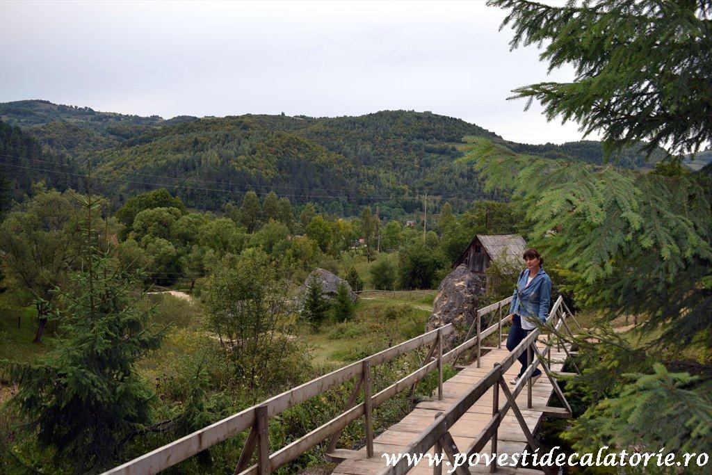 Cascada Pisoaia Vidra Apuseni (35)