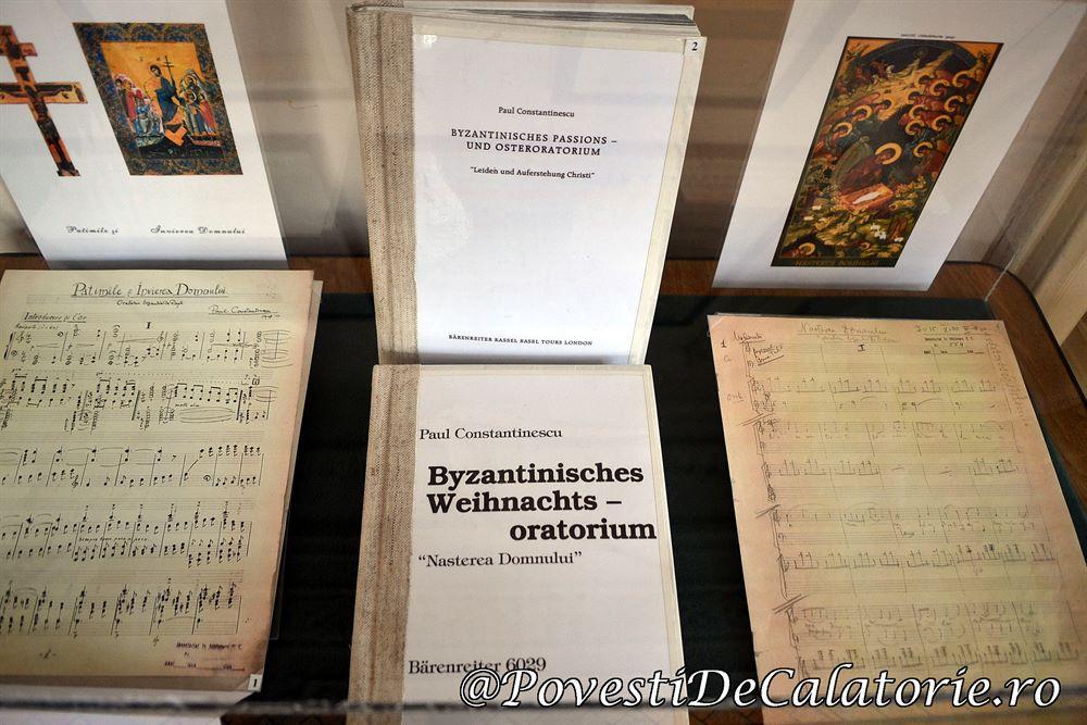 Muzeul Paul Constantinescu (21)