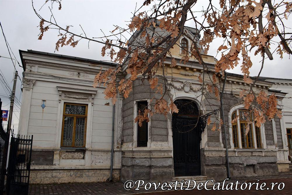 Muzeul Paul Constantinescu (52)