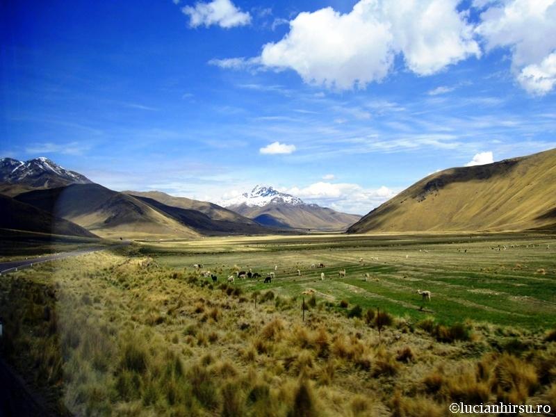 PERU - ALTIPLANO - 4300 M ALTITUDINE