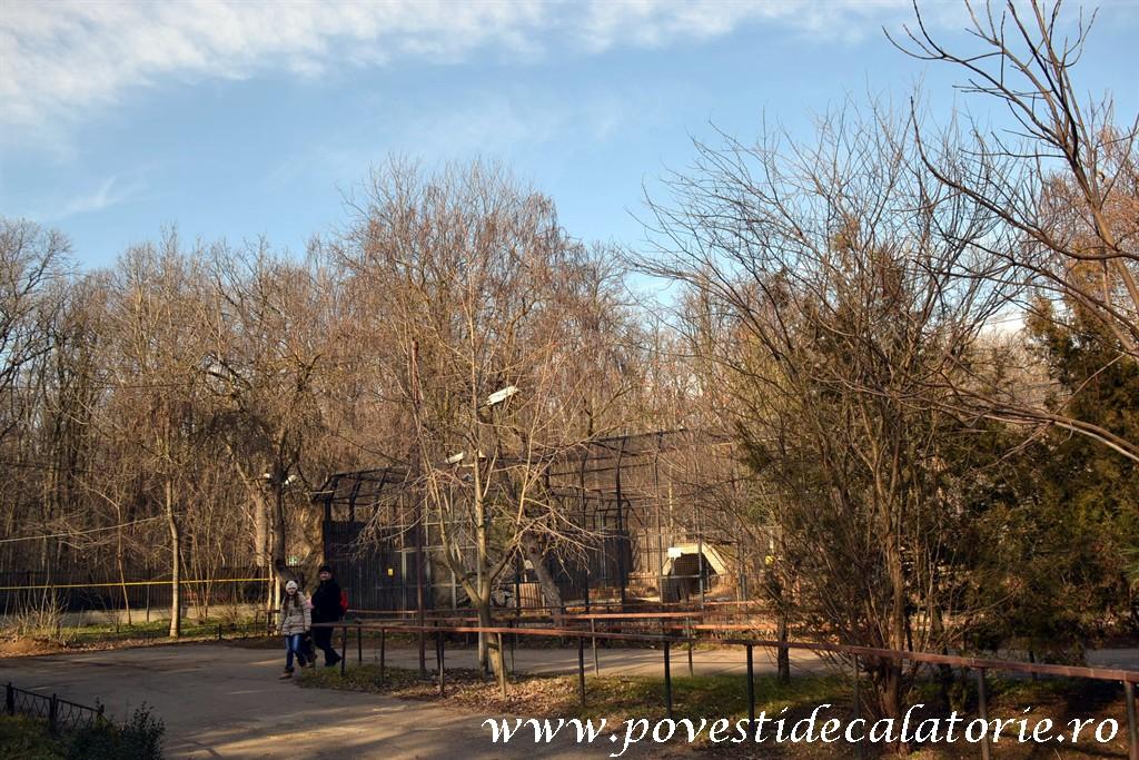 Zoo Bucuresti (210)