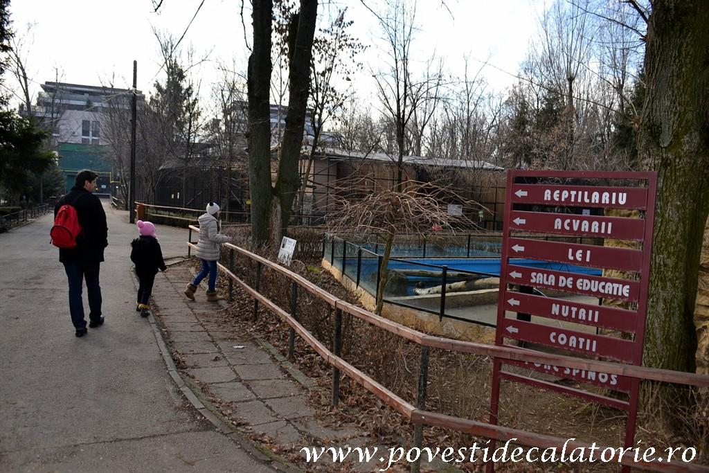 Zoo Bucuresti (4)
