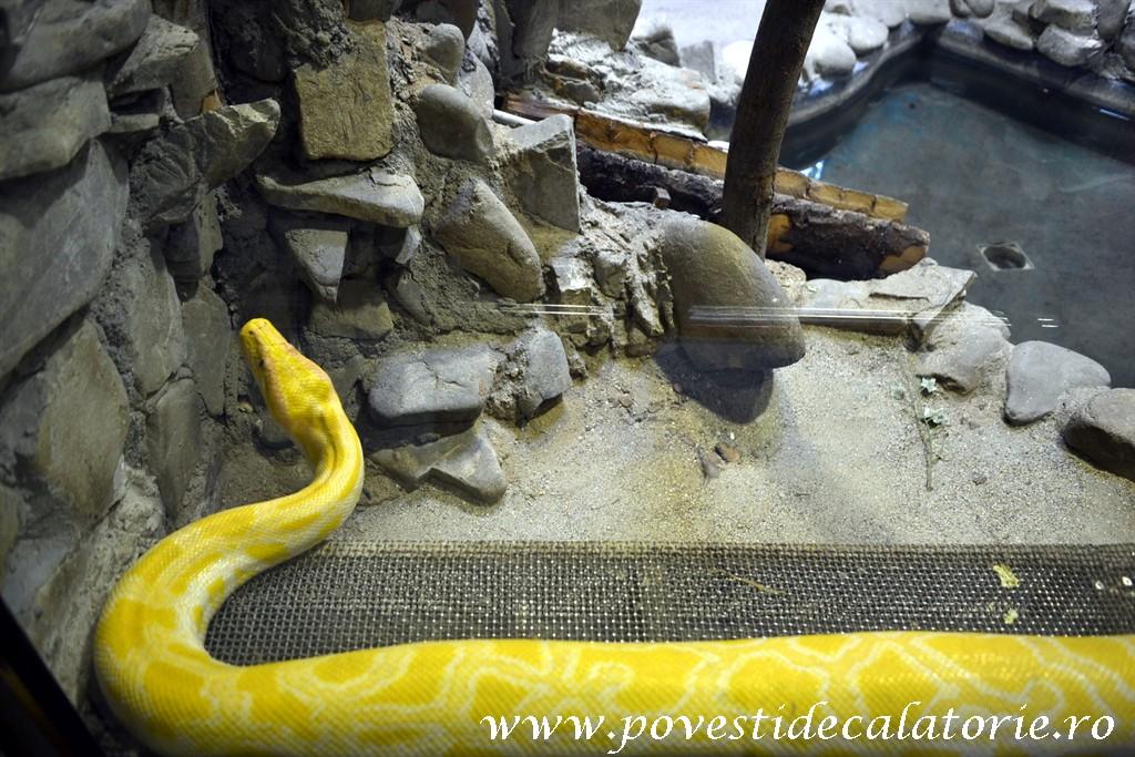 Zoo Bucuresti (41)