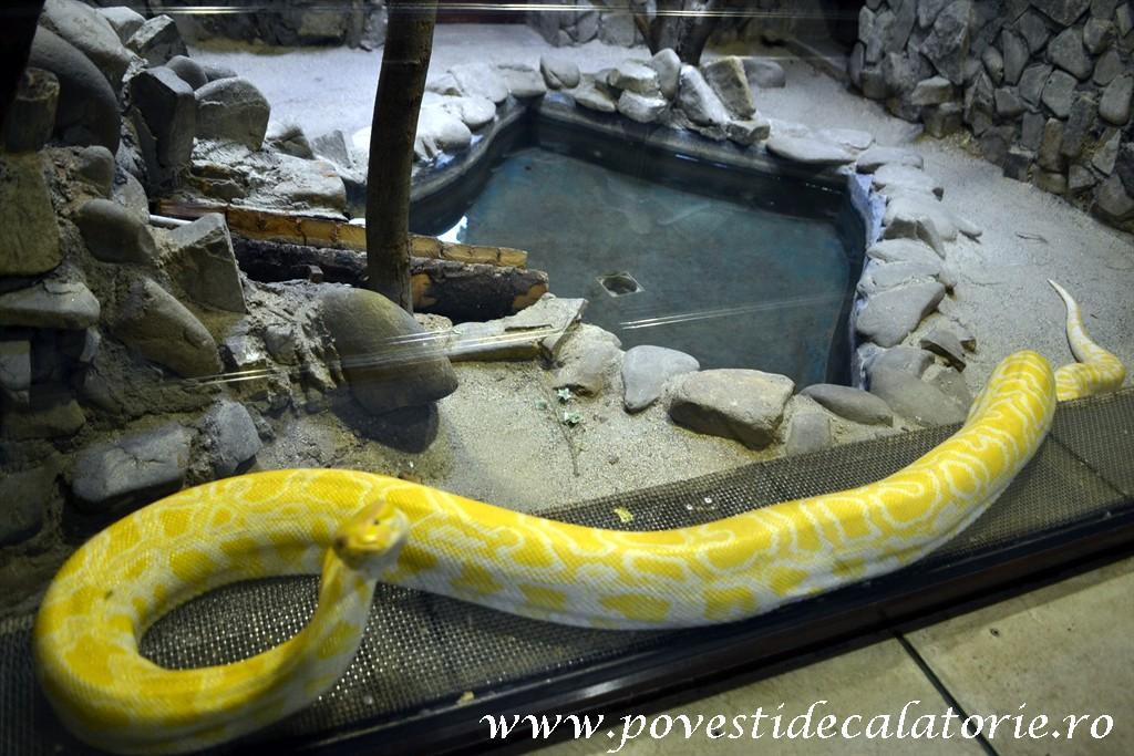 Zoo Bucuresti (45)