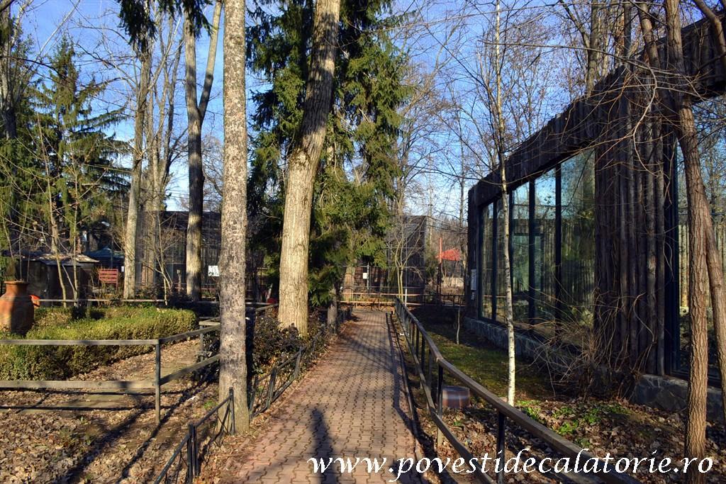 Zoo Bucuresti (54)