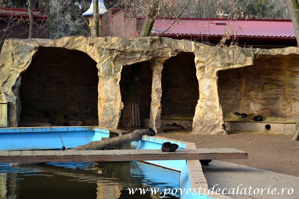 Zoo Bucuresti (6)