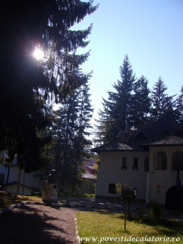 Vila Luminis George Enescu (12)