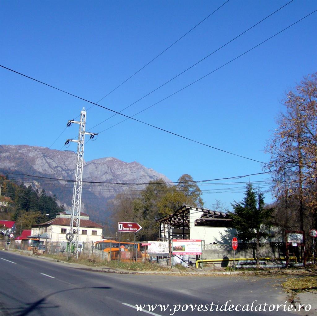 Vila Luminis George Enescu (2)
