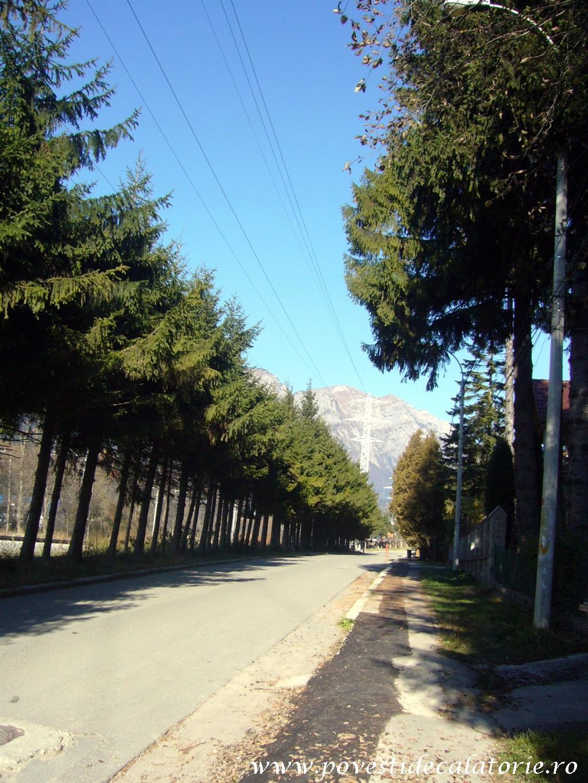 Vila Luminis George Enescu (5)