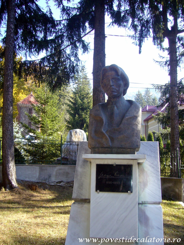 Vila Luminis George Enescu (66)