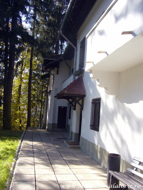 Vila Luminis George Enescu (68)