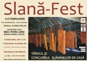 slana-fest-2014-la-cluj-napoca-i95347
