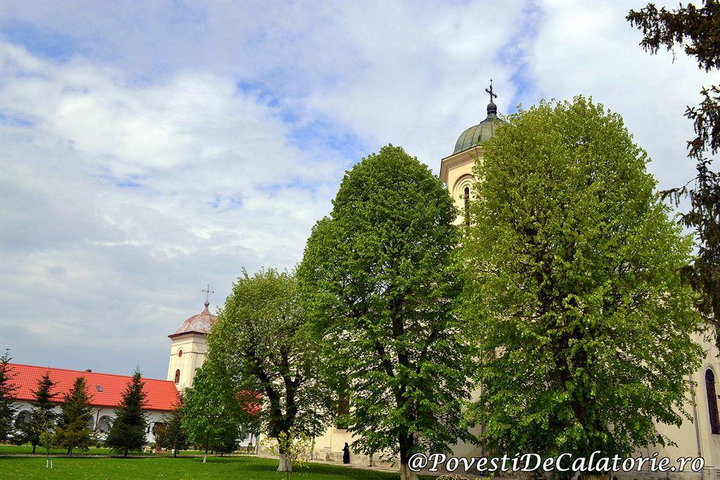 Manastirea Ghigiu (22)