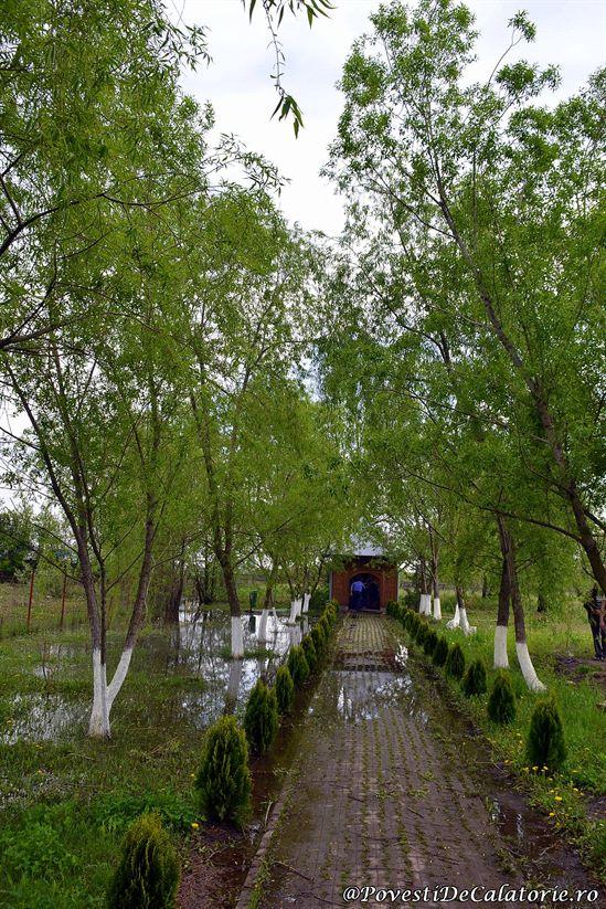 Manastirea Ghigiu (9)