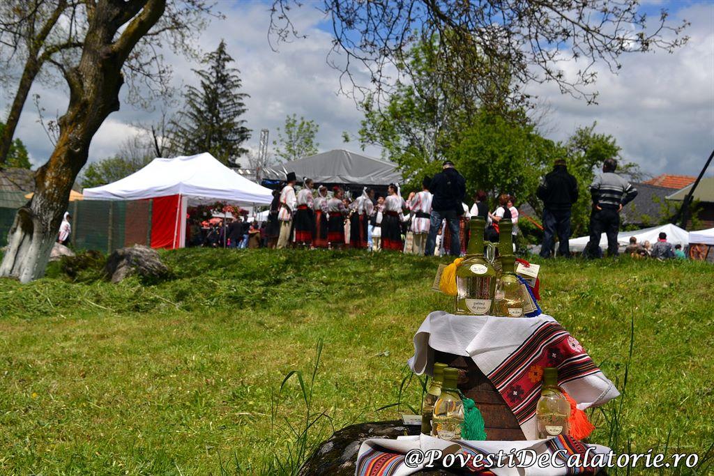 Muscate si Castelul Bran 1 (280)