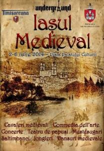 festivalul-iasul-medieval-2014-i100082