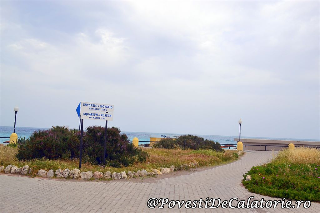 Acvariul din Rhodos (78)