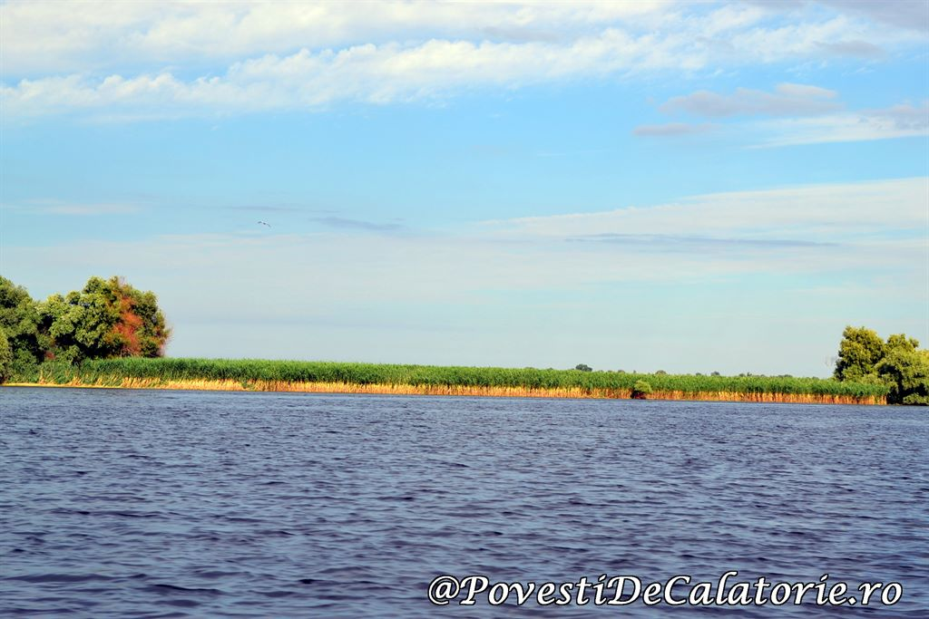 Delta Dunarii  (171)