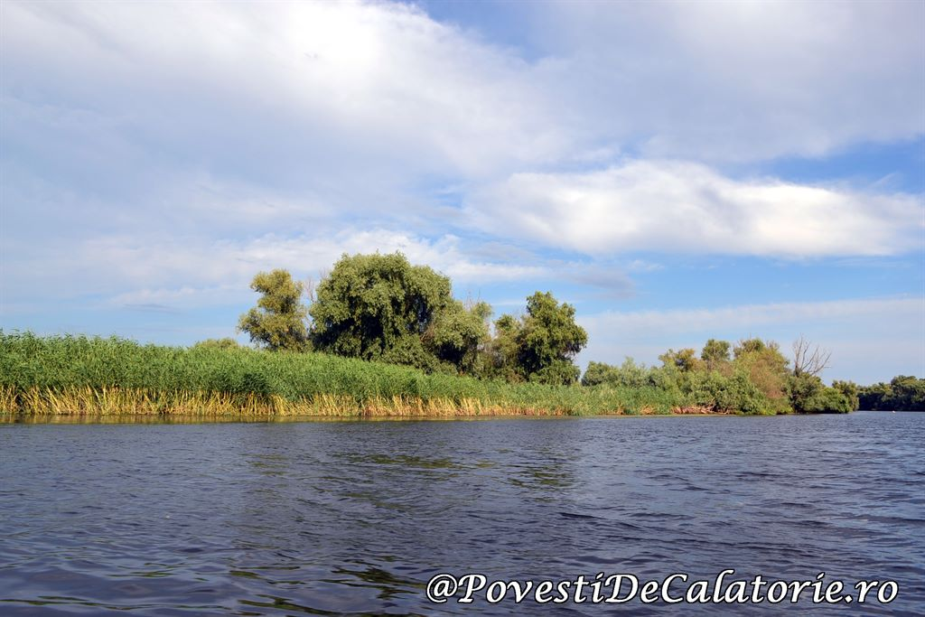 Delta Dunarii  (180)