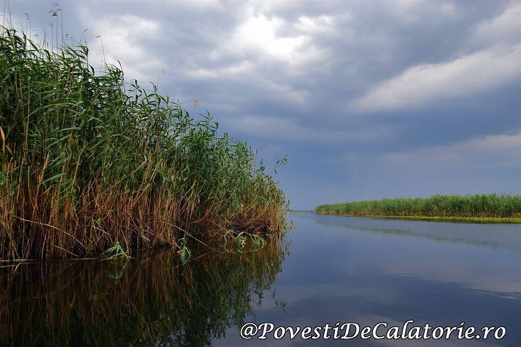 Delta Dunarii 2 (310)