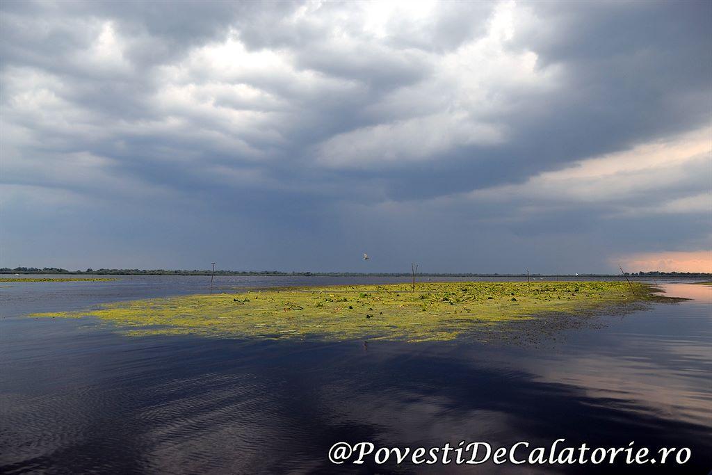 Delta Dunarii 2 (314)
