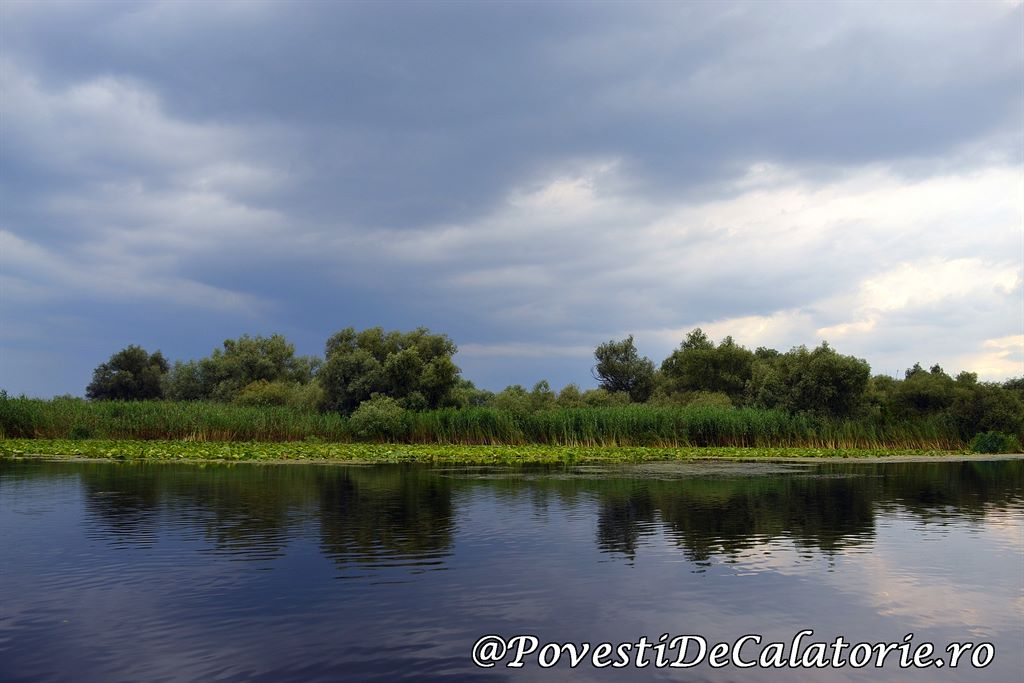 Delta Dunarii 2 (325)