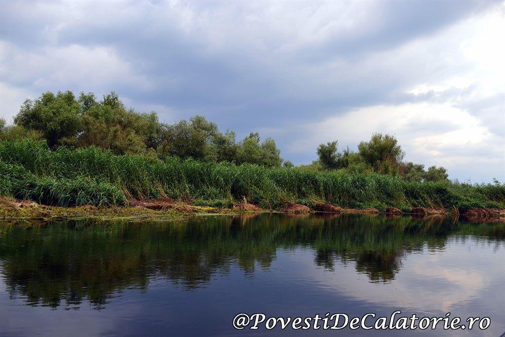 Delta Dunarii 2 (332)