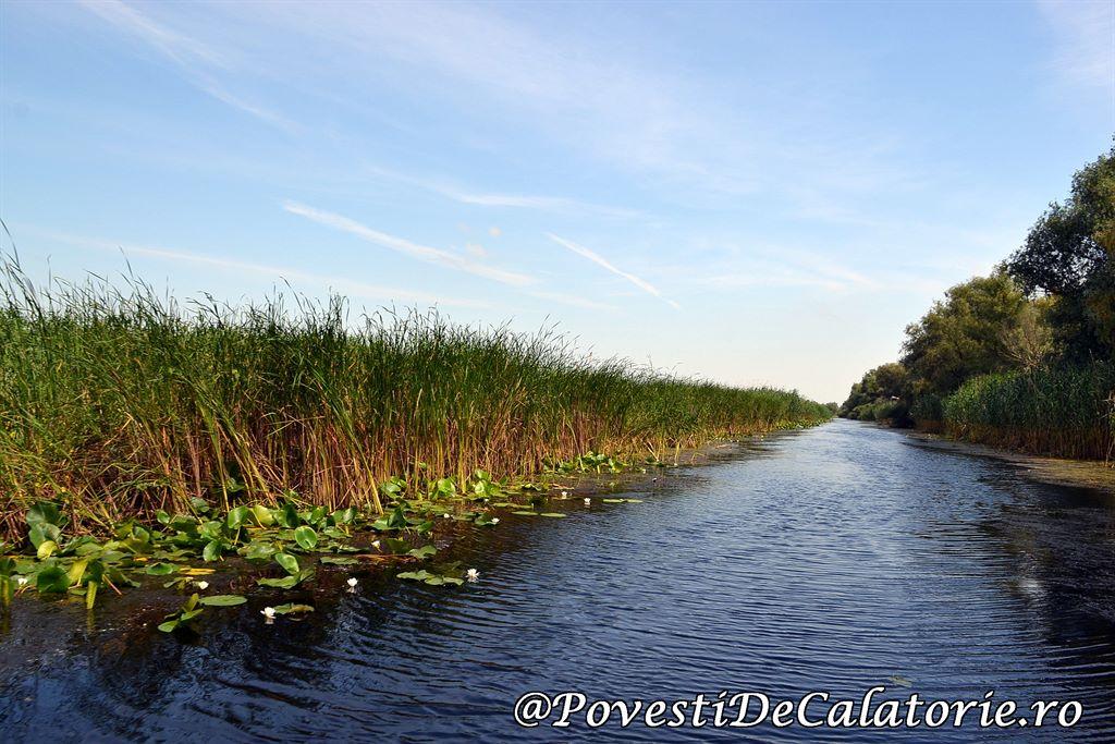 Delta Dunarii 2 (35)
