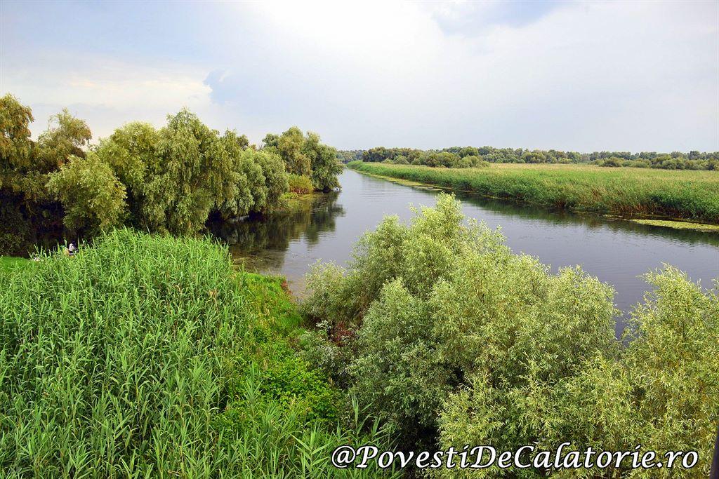 Delta Dunarii 2 (425)