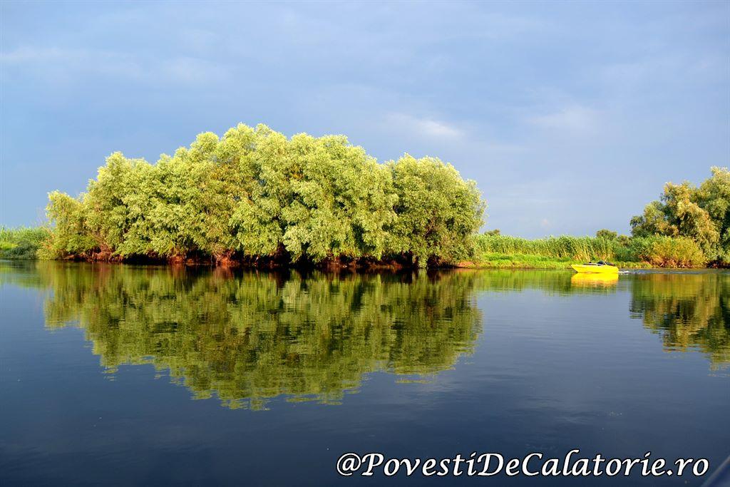 Delta Dunarii 2 (455)
