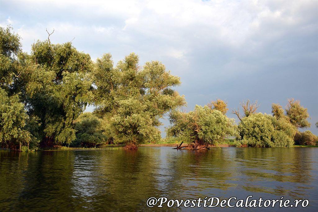 Delta Dunarii 2 (470)
