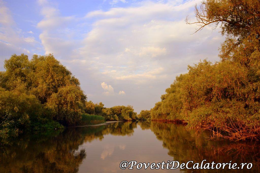 Delta Dunarii 2 (513)