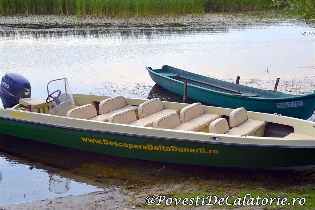 Delta Dunarii 2 (788)