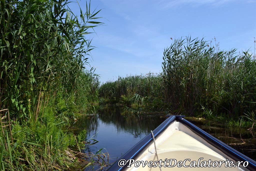 Delta Dunarii 2 (91)