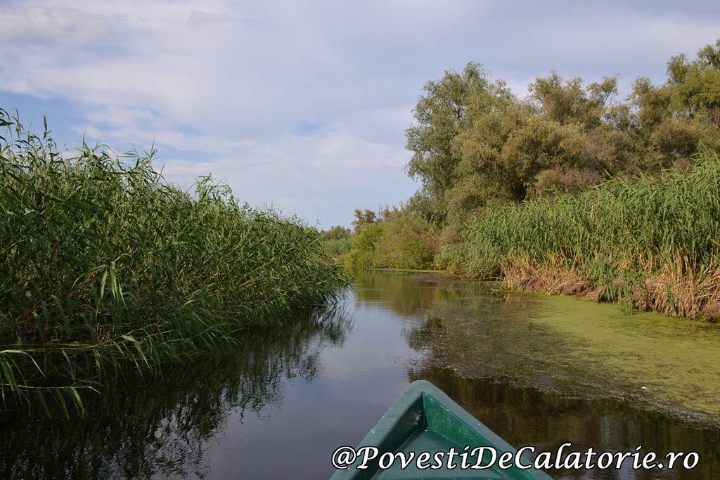 Delta Dunarii  (220)