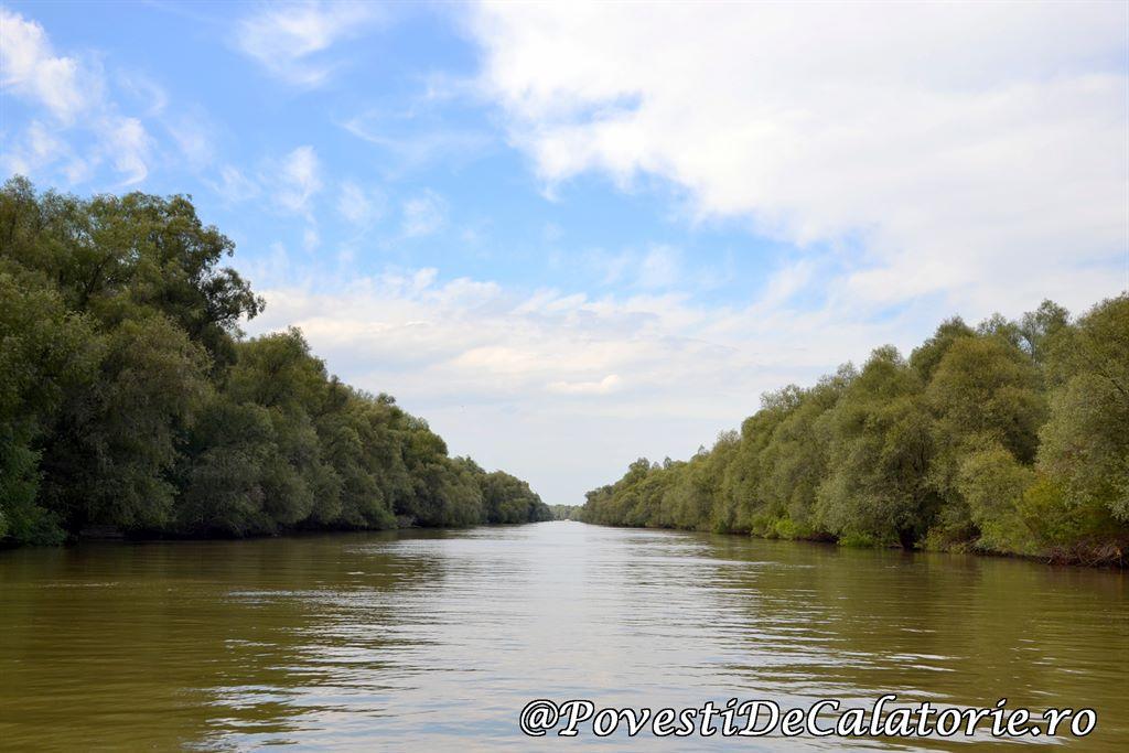 Delta Dunarii  (37)