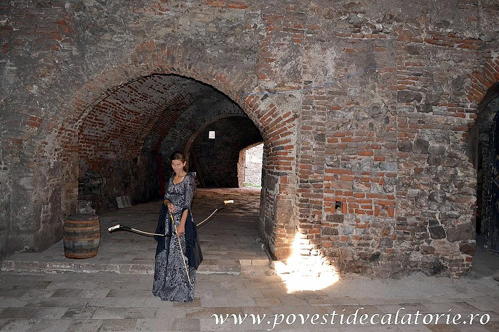 Castelul Corvinilor (110)