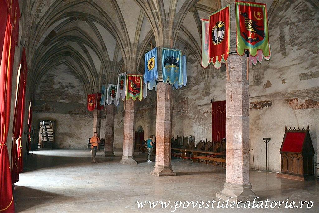 Castelul Corvinilor (178)