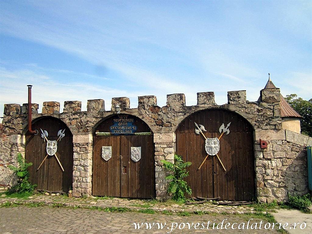 Castelul Corvinilor (78)